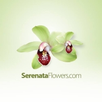 Save £10 on Selected Bouquets at Serenata Flowers